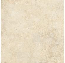 Wand- und Bodenfliese Apulia cream 60,5x60,5 cm