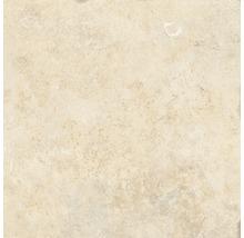 Wand- und Bodenfliese Apulia cream 40,6x40,6 cm