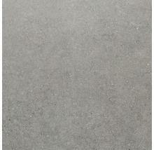 Feinsteinzeug Wand- und Bodenfliese Sandstein grau 60x60 cm
