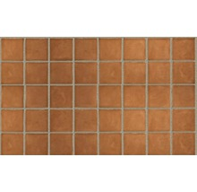 Terracotta Wand- und Bodenfliese Dublin orange, 150x150x18 mm
