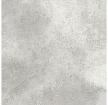 Steinzeug Wand- und Bodenfliese Taurus hellgrau 31 x 31 cm
