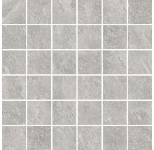 Feinsteinzeugmosaik Steuler Kalmit zement 30x30 cm