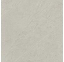 Bodenfliese Steuler Kalmit zement 120x120 cm
