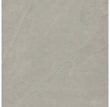 Bodenfliese Steuler Kalmit taupe 120x120 cm