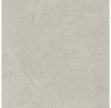Bodenfliese Steuler Kalmit zement 60x60 cm