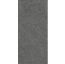 XXL Wand- und Bodenfliese Steuler Kalmit graphit 120x260 cm