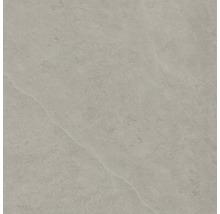 Bodenfliese Steuler Kalmit taupe 60x60 cm