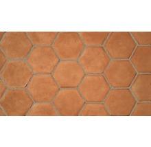 Terracottafliese Dublin Hexagon/Octagon, 225x198x18 mm