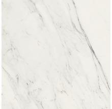 Wand- und Bodenfliese Vision Calacatta grey 80x80 cm poliert