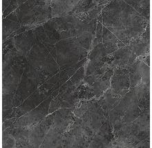 Wand- und Bodenfliese Vision black 59x59 cm poliert