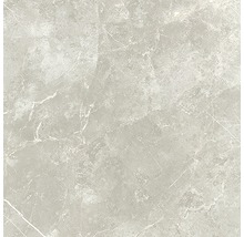 Wand- und Bodenfliese Vision pearl 59x59 cm poliert