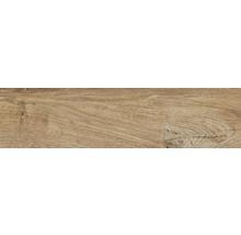 Wand- und Bodenfliese Aretino nut 15x61 cm R11