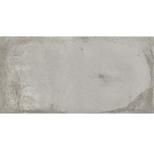 Wand- und Bodenfliese Metall hellgrau 30x60 cm