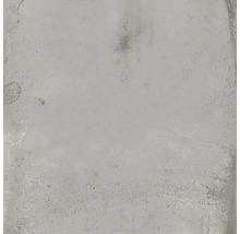 Wand- und Bodenfliese Metall hellgrau 60x60 cm