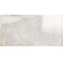 Wand- und Bodenfliese Metall weiß 60x120 cm poliert