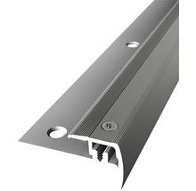 Treppenkantenprofil 325V Alu eloxiert edelstahl 100cm