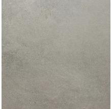 Feinsteinzeug Wand- und Bodenfliese Sandstein braungrau 100x100 cm