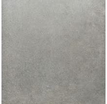 Feinsteinzeug Wand- und Bodenfliese Sandstein grau 100x100 cm