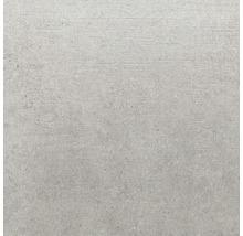 Wand- und Bodenfliese Sandstein hellgrau 80x80 cm R11