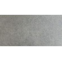 Wand- und Bodenfliese Sandstein grau 40x80 cm R11