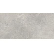 Feinsteinzeug Wand- und Bodenfliese Aspen grigio 60x120 cm