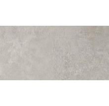 Feinsteinzeug Wand- und Bodenfliese Aspen grigio 31x62 cm