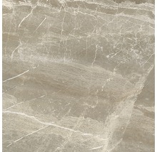 Wand- und Bodenfliese Nuance beige lappato 59x59 cm