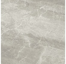 Wand- und Bodenfliese Nuance grey lappato 59x59 cm