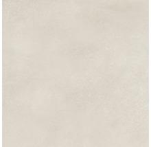 Wand- und Bodenfliese Fresh Ivory Natural 80x80 cm