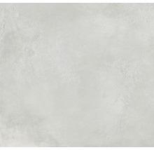 Wand- und Bodenfliese Fresh Ash Natural 120x120 cm
