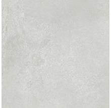 Wand- und Bodenfliese Fresh Ash Natural 80x80 cm