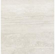 Wand- und Bodenfliese Memento Travertino bianco lappato 59x59 cm