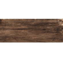 Feinsteinzeug Terrassenplatten Dakota nut 40x120 cm