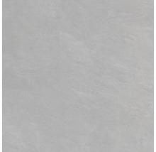 Wand- und Bodenfliese Blake grigio 60x60 cm
