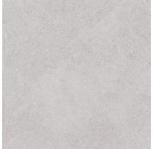 Feinsteinzeug Wand- und Bodenfliese Lit grigio satin 60x60 cm