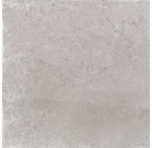 Feinsteinzeug Wand- und Bodenfliese Lit grigio 60x60 cm