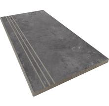 Stufenplatte abgerundet Gare du Nord graphite 30x60 cm
