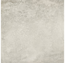 Feinsteinzeug Terrassenplatte Amstel 59,5 x59,5 x 2 cm rektifiziert