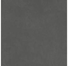 Bodenfliese Meissen Optimum grafit 59,8x59,8x0,8cm