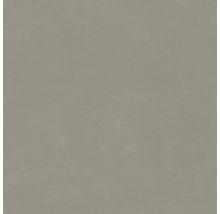 Bodenfliese Meissen Optimum grau 59,8x59,8x0,8cm