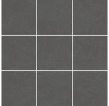 Mosaik Meissen Optimum graphit matt Steingröße 10x10cm