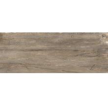 Feinsteinzeug Terrassenplatte Dakota Marrone 40 x 120 x 2 cm rektifiziert