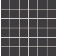 Feinsteinzeugmosaik Rako Taurus Color schwarz, 30x30cm, Steingröße 5x5cm