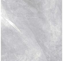 Wand- und Bodenfliese Pulpis Grey 60X60cm poliert, rektifiziert