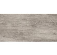 Feinsteinzeug Wand- und Bodenfliese Silent Wood grey 30x60 cm