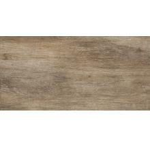 Feinsteinzeug Wand- und Bodenfliese Silent Wood beige 30x60 cm
