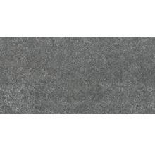 Terrassenplatte Steuler Simplon anthrazit 40x80x2cm