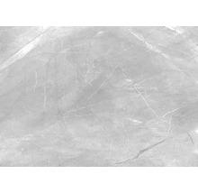 Wand- und Bodenfliese Pulpis Grey 100x100cm, poliert, rektifiziert