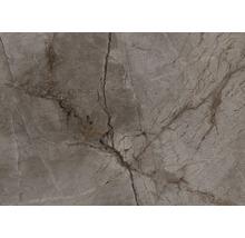 Wand und Bodenfliese Root Ash 100x100cm, rektifiziert