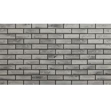 Kunstharz-Verblender Grau bunt Elastolith 24x7 cm